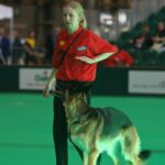 amber-crufts-gill-storr