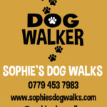 Sophies-dog-walks-advert-for-local-look1