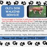 oli-dog-walking-leaflet-2015-002