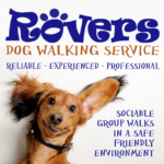 rovers-google-profile-pic