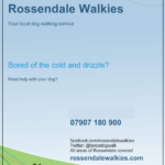 rossendale-walkies-dog-walking