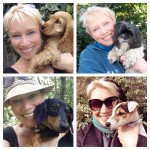 me-dogs-collage-sqaure